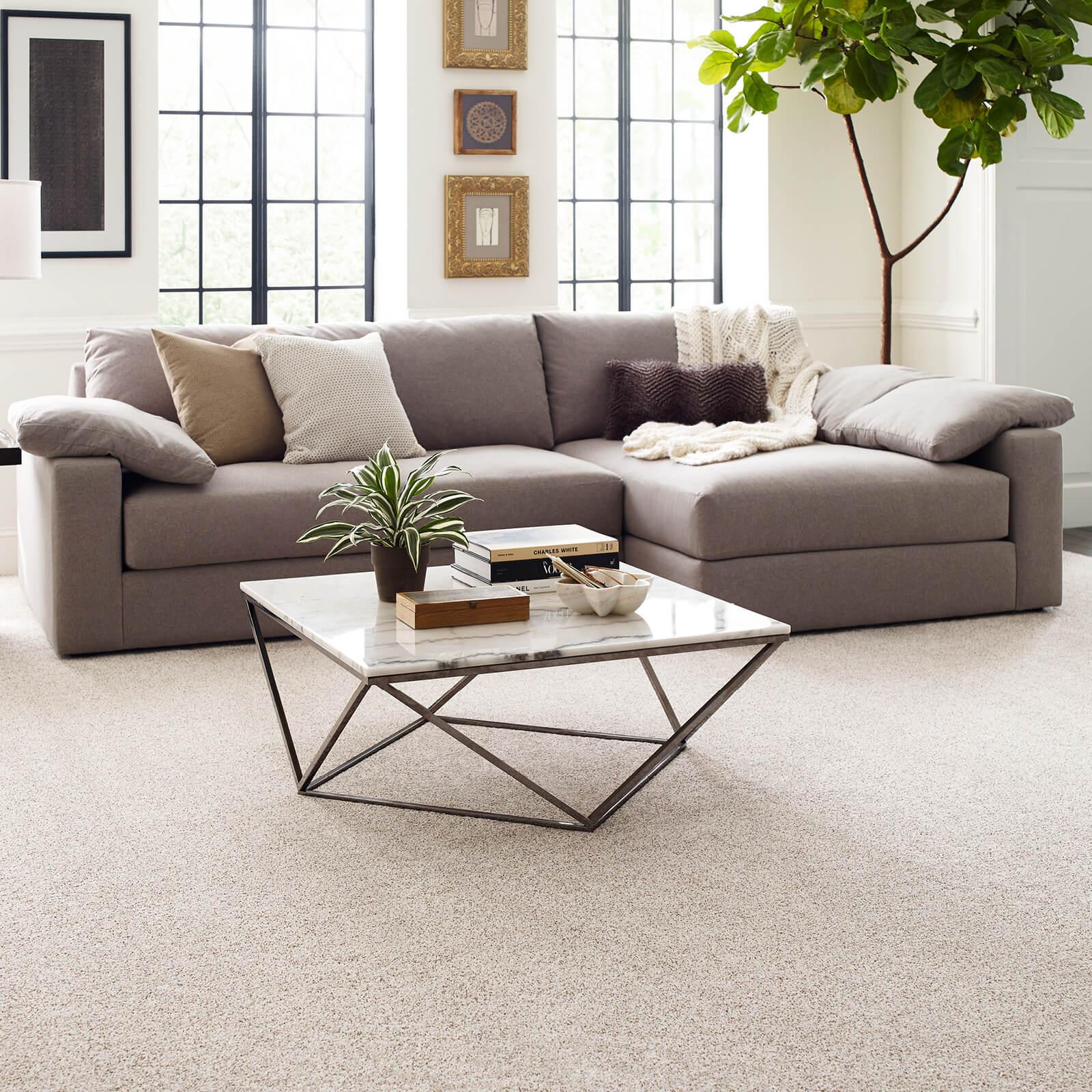 Carpet in living room | J/K Carpet Center, Inc