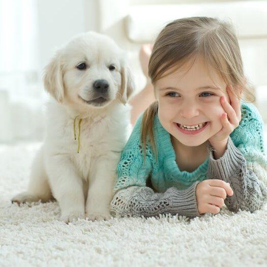 Kid happy with pet on carpet | J/K Carpet Center, Inc